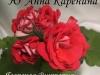 Ю Анна Каренина