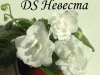 DS Невеста