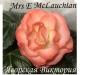 Mrs-E-McLauchlan1